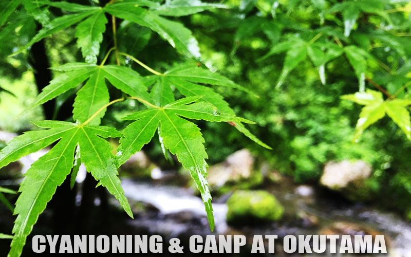 CYANIONING & CAMP AT OKUTAMA 20150704-05