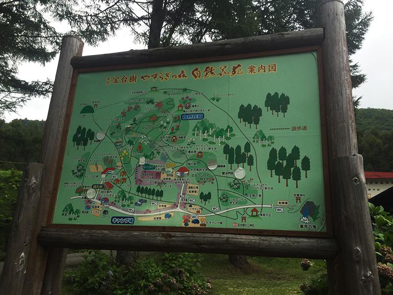 hodaigi-camp140
