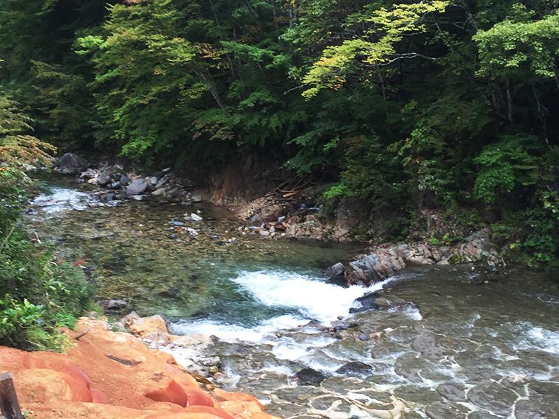hodaigi-camp156