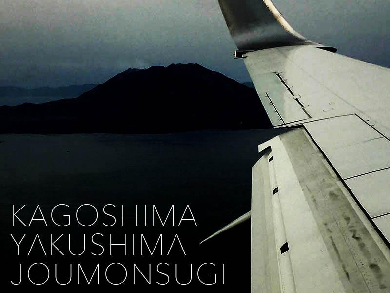 kagoshima-yakushima-joumonsugi-i