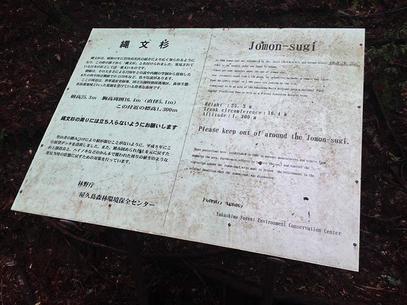 kagoshima-yakushima-joumonsugi150