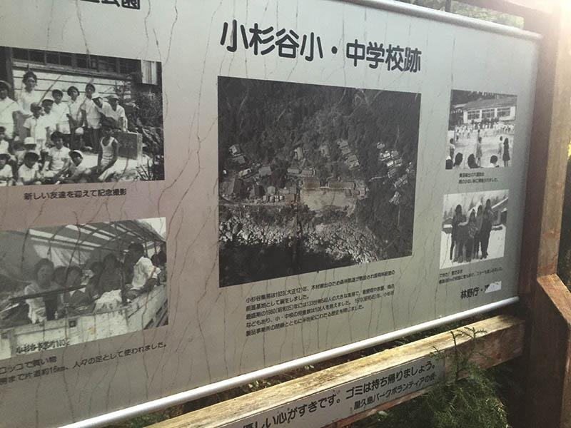 kagoshima-yakushima-joumonsugi87