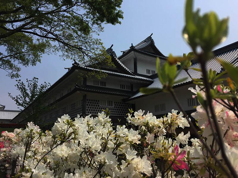 kanazawa-gifu43