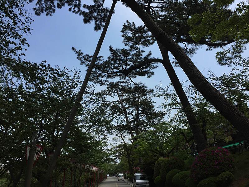 kanazawa-gifu49