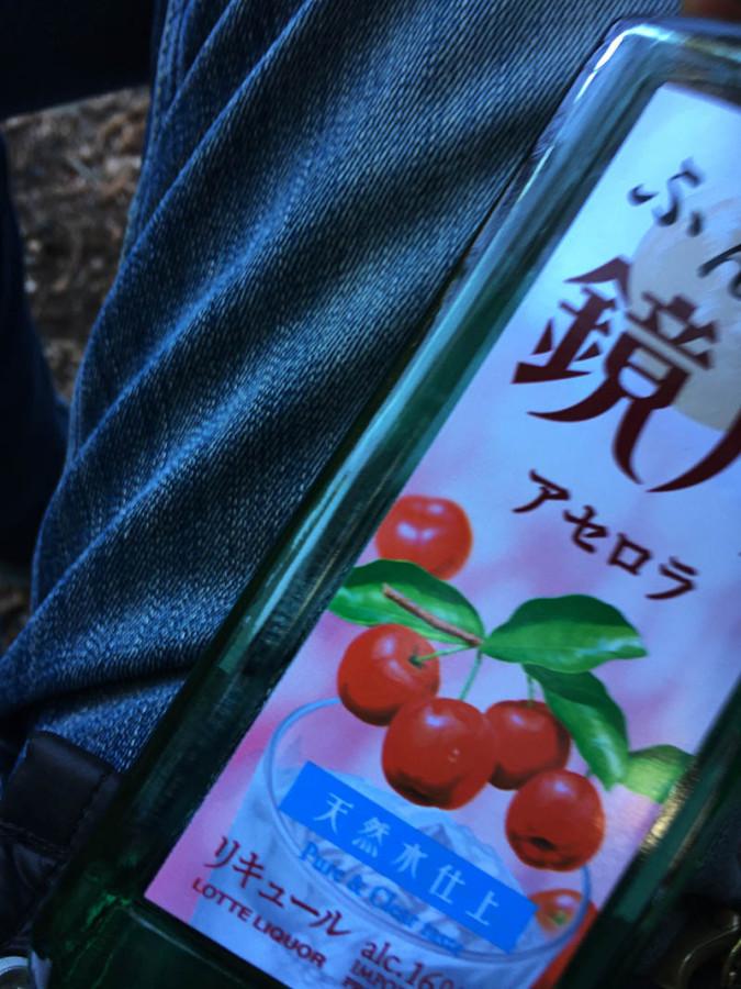 nagano-toyama68