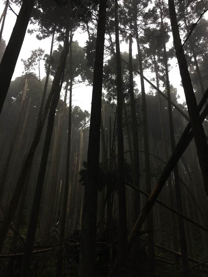 shizuoka-camp23