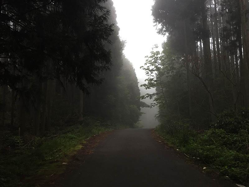 shizuoka-camp25