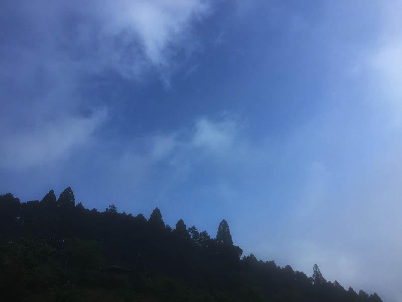 shizuoka-camp43