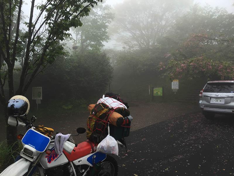 shizuoka-camp48