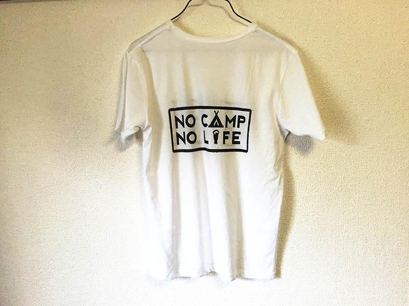 NO-CAMP-NO-LIFE10