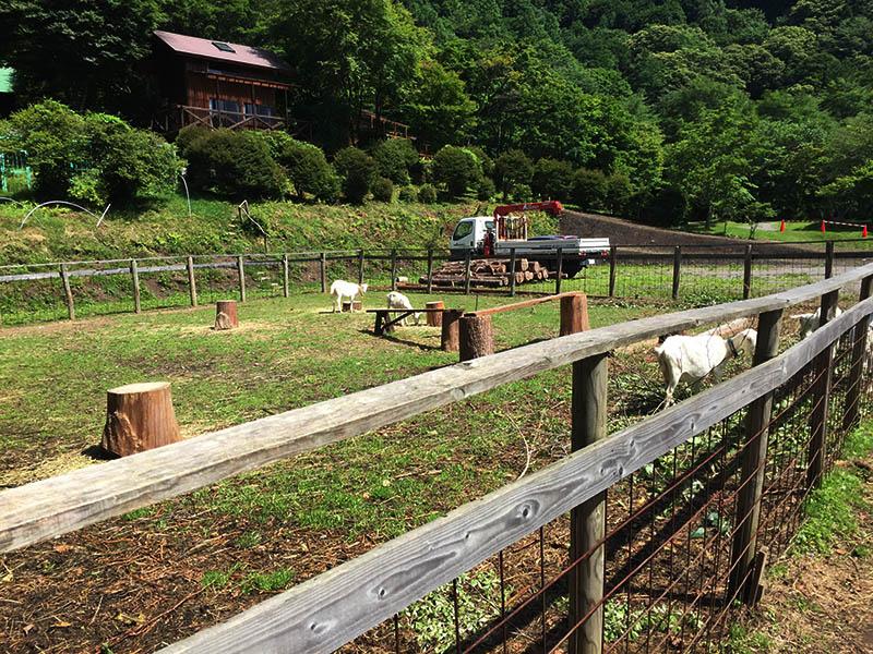 gunma-warabidaira-camp-place16