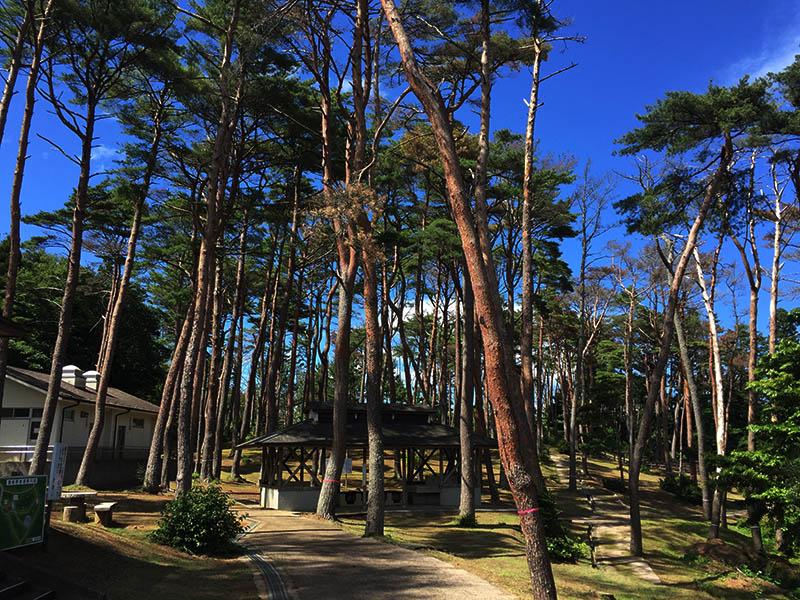 miyagi-osaki-camp02