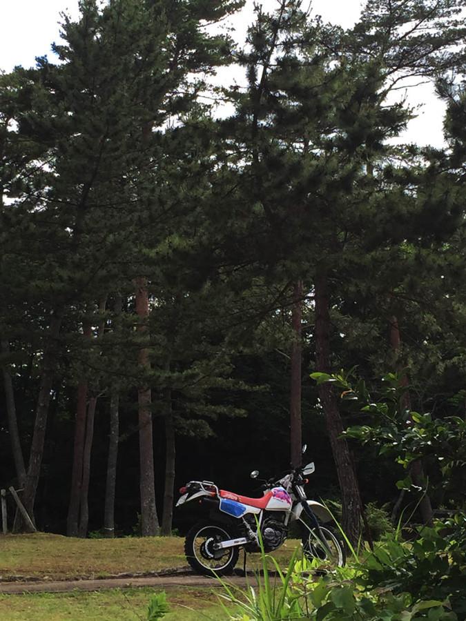 miyagi-osaki-camp10