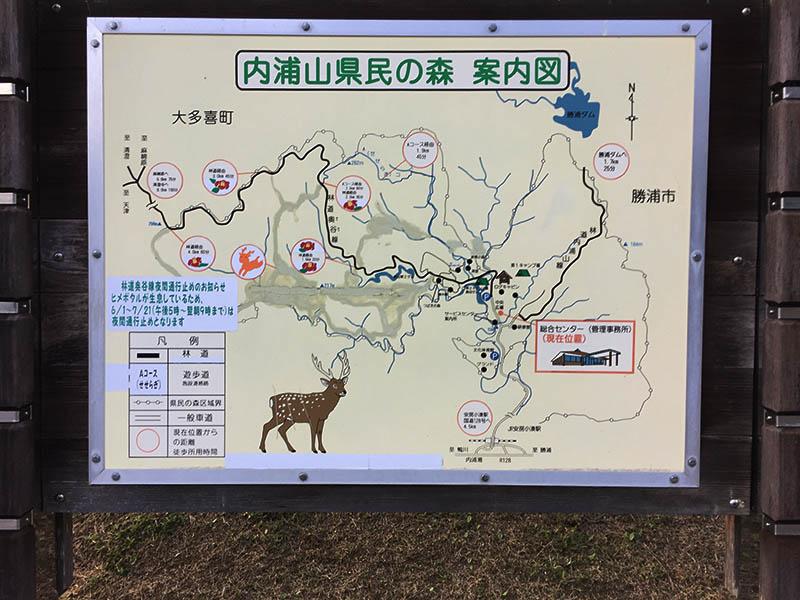 uchiurayamakenminnomori-camp10