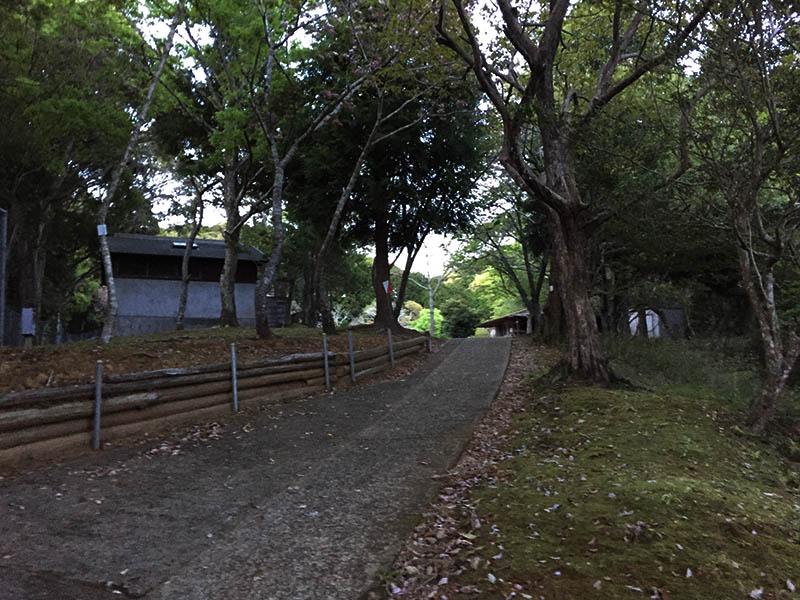 uchiurayamakenminnomori-camp14