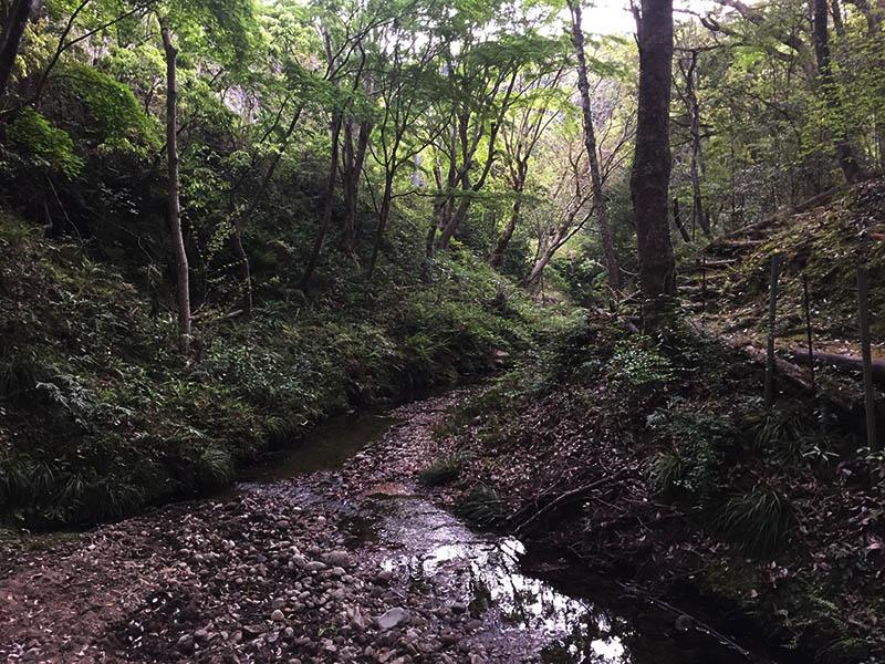 uchiurayamakenminnomori-camp32