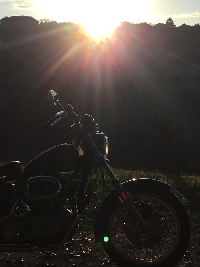 オレンジ村オートキャンプ50