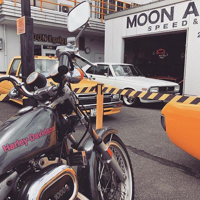 MOON#harleydavidson #sportster #shovelhead #shovelsports #ironhead #vintage #xlh #xlch #77xlh #xlh1000 #vintagemotorcycle #ironsports #japan #tooeysworks#garagelife#crassicmotorcycle#mooneyes